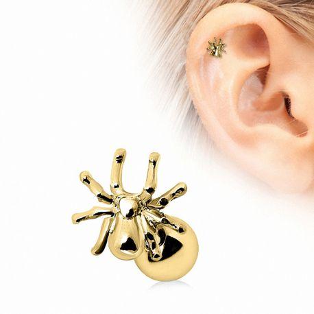 Piercing cartilage plaqué or araignée
