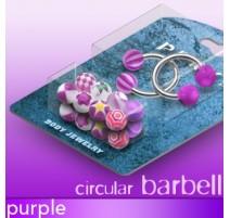 Pack 2 Piercing fer à cheval Boules Acrylique Violet