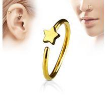 Piercing nez anneau étoile doré