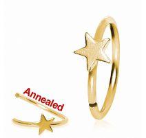 Piercing nez anneau doré avec étoile