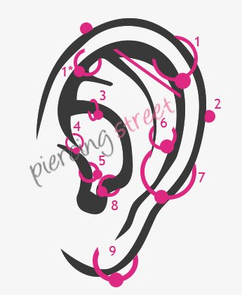 Les différents types de piercings à l'oreille